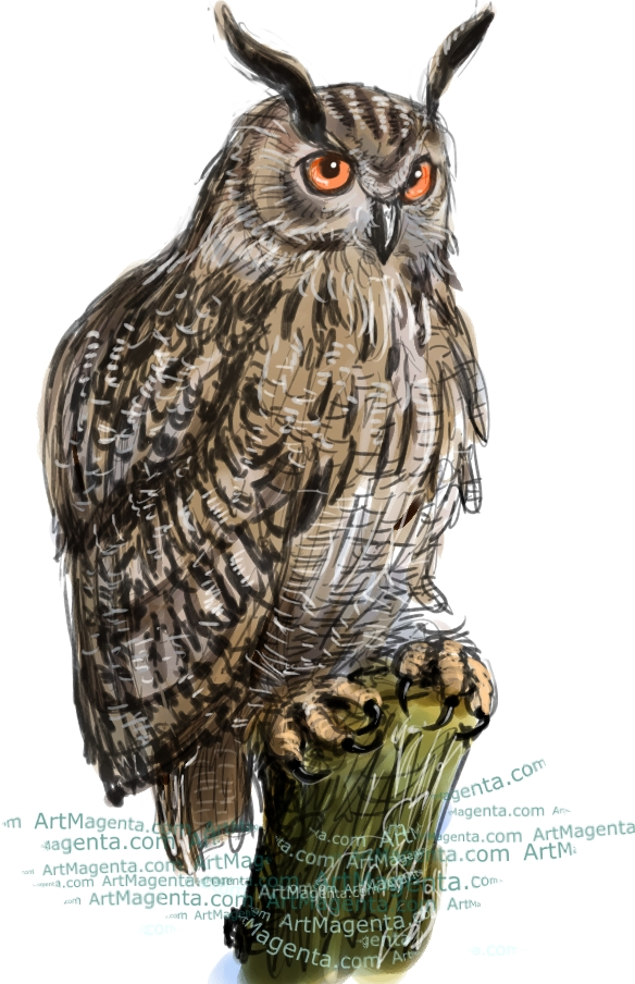Eagle Owl sketch painting. Bird art drawing by illustrator Artmagenta