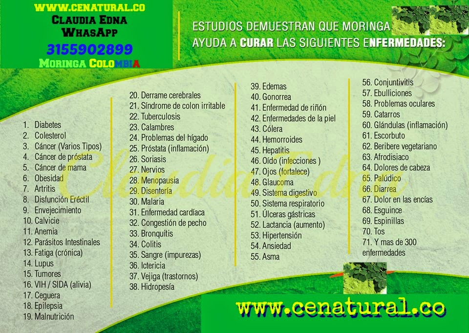 INFORMACIÓN Y VENTAS by Claudia Edna: MORINGA en Colombia