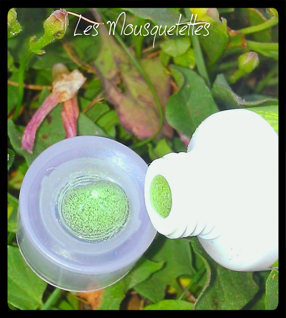 Tea Tree Oil Vedette - Les Mousquetettes©