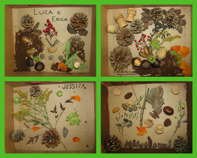 photo of: Reggio Emilia nature collages in shadow box: art project