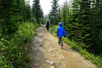 Parker Ridge Trail, Banff