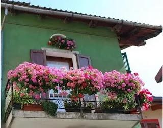 balkonda Çiçek Bakımı, Balkonlarımızı Çiçeklerle Süsleyelim, Balkonda Çiçeklerle Gelen Güzellik, kadin,