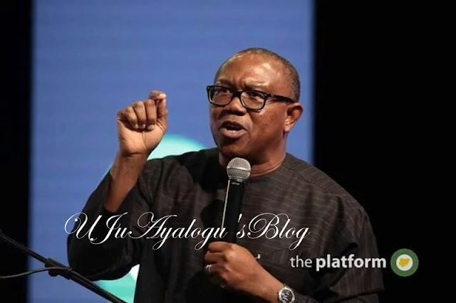 People will stop shouting over allowance of senators if I reveal what govs earn -Peter Obi
