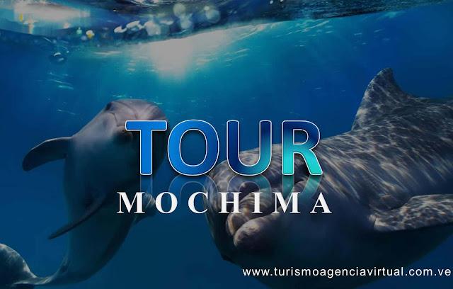 imagen Excursiones tour