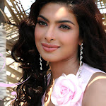 Priyanka Chopra Nice Cute Pictures