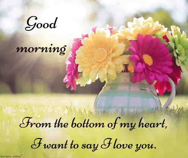 great good morning text for her with colorful flowers in pot