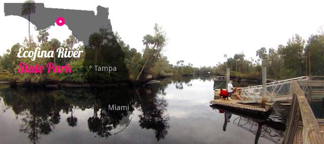 Ecofina River State Park - Lamont, Florida USA