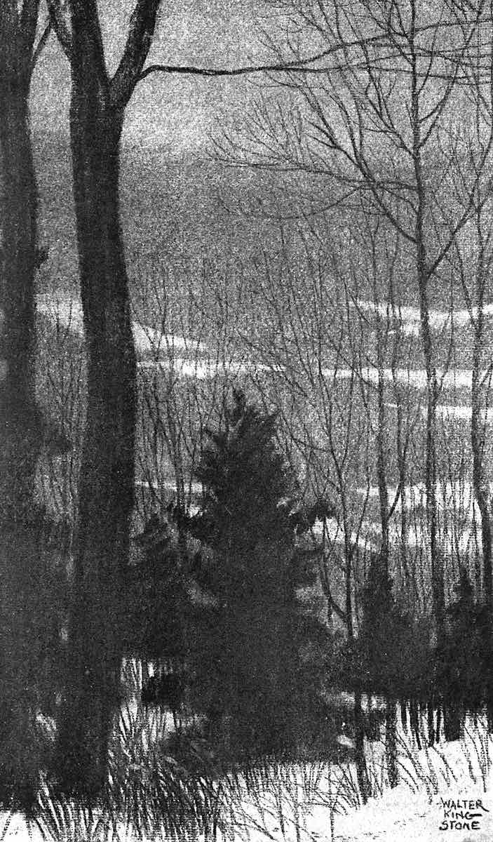 forest in winter, a 1920 Walter King Stone book illustrationin silhouette
