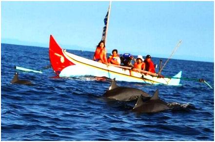 Destinasi wisata Teluk Kiluan Lampung