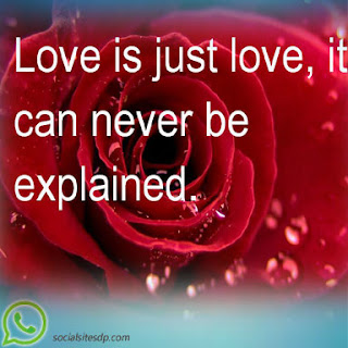 Valentines Day 2017 love quotes