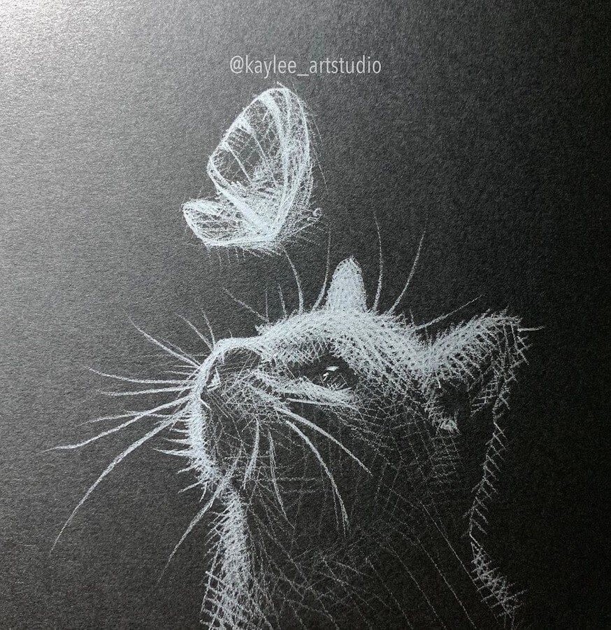 06-Cat-and-Butterfly-Kay-Lee-Drawings-www-designstack-co