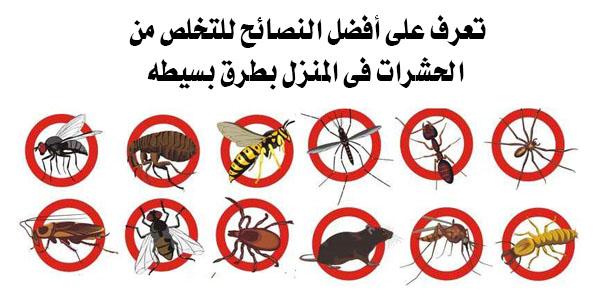 نصائح للتخلص من الحشرات فى المنزل
