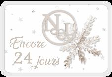 Le Noël blanc de DCS