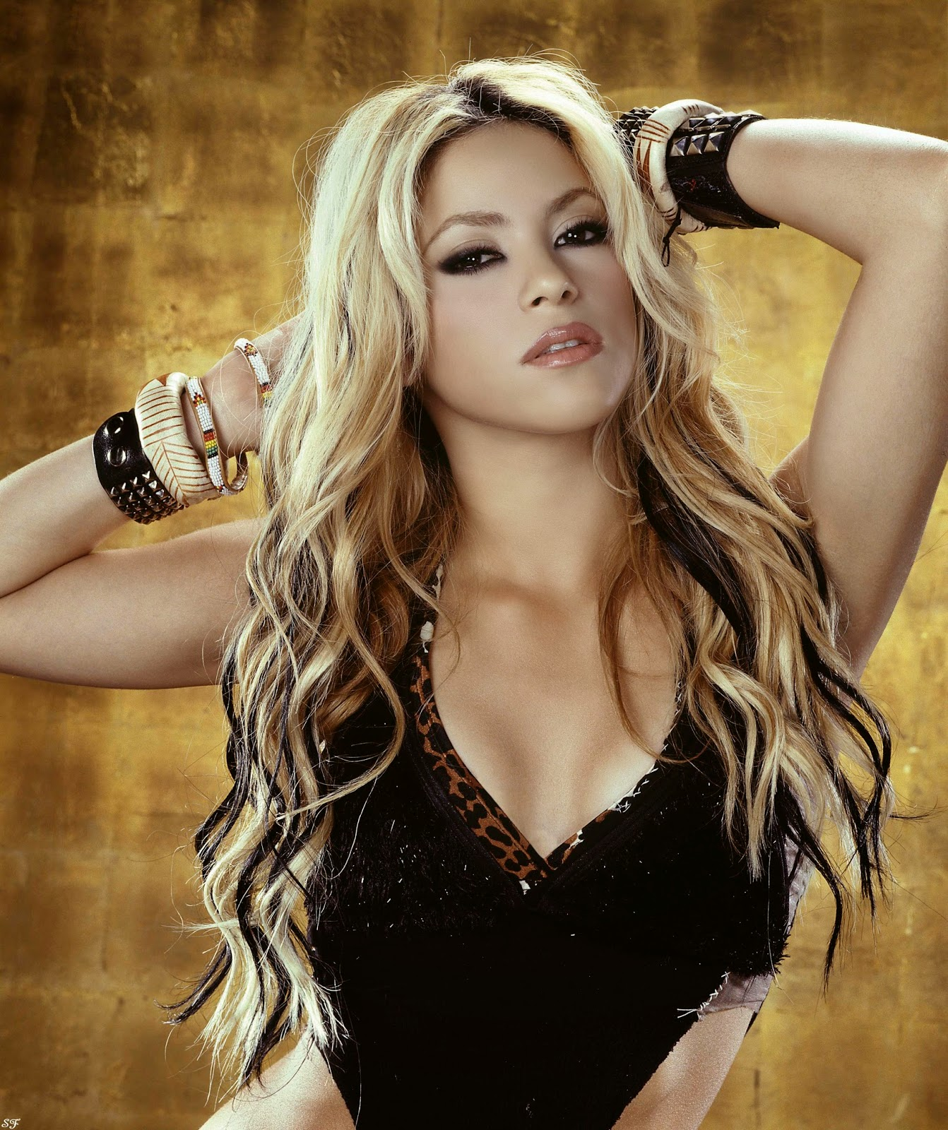 Lovable Images Beautiful Shakira Hd Wallpapers Free