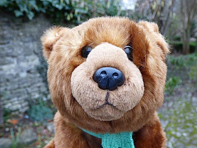 toy bear, teddy bear