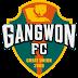 Daftar Skuad Pemain Gangwon FC 2018