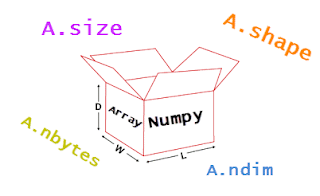 numpy array attributes