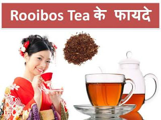 rooibos-tea-health-benefits-in-hindi-language