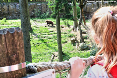 Kinder beobachten einen Bär im Bärengehege