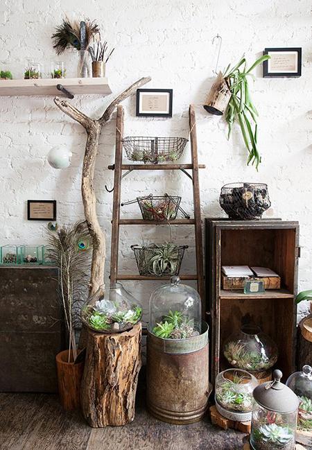 jardim dentro de casa criado com peças rústicas, prateleiras, estantes, escada e troncos
