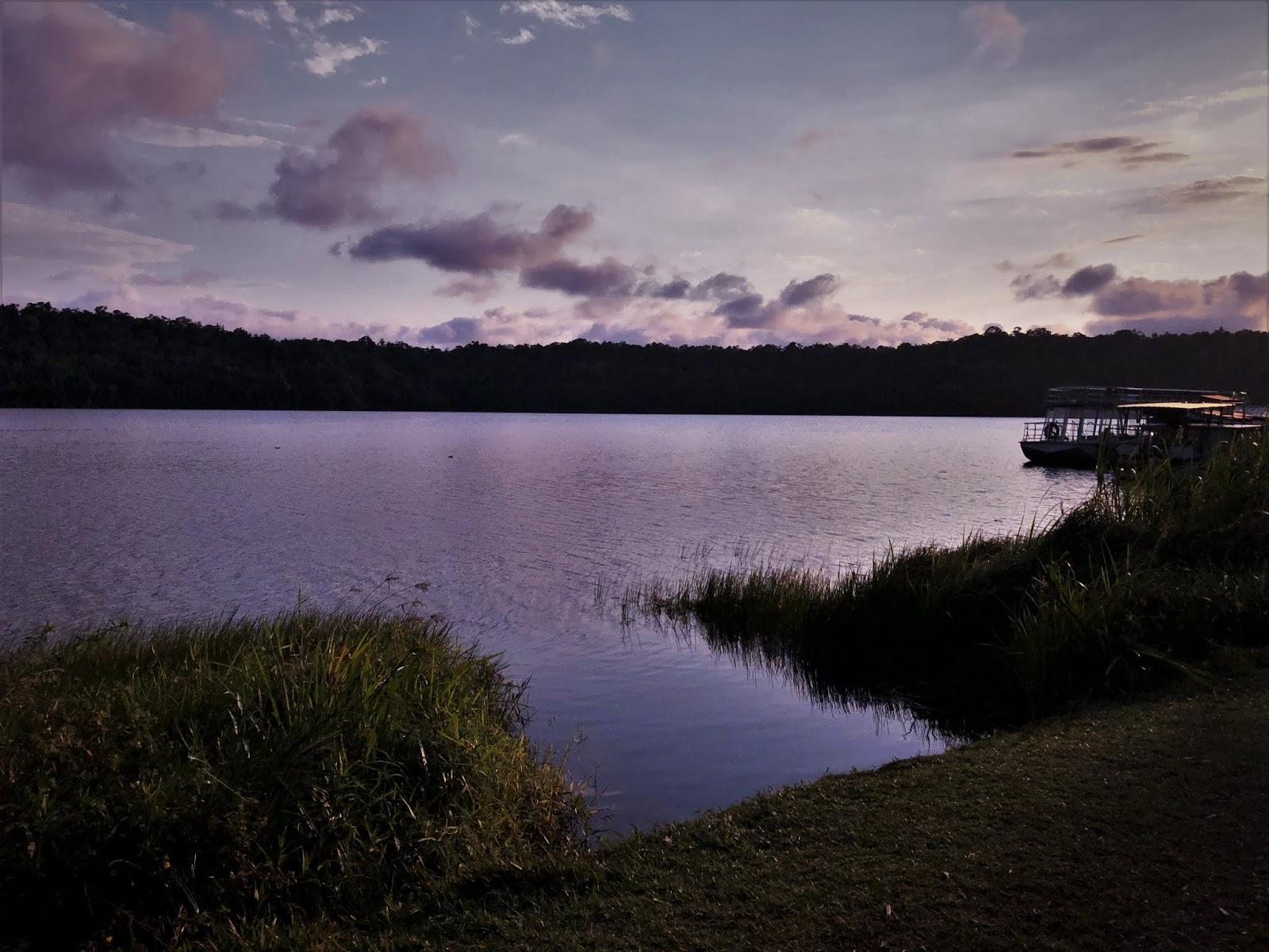 """Jezioro Barrine o filetowym zachodzie słońca. Z przody trzciny tworzą a la """"bramę"""" wejściową do wody; z tyłu rozpościera się las."""