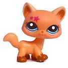 Littlest Pet Shop Multi Pack Cat (#2258) Pet