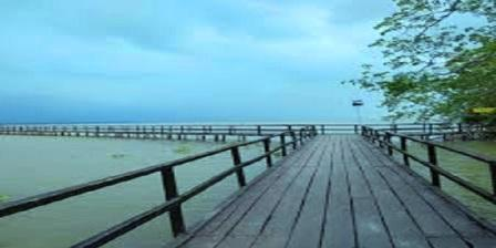 Kawasan Ekowisata Mangrove Mengkapan