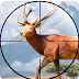 Sniper Shooter: Animal Hunting Game Tips, Tricks & Cheat Code