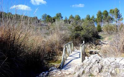 Senda entre la Batana y la Colgada. Qué ver en las Lagunas de Ruidera