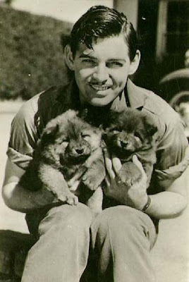 Clark Gable dogs