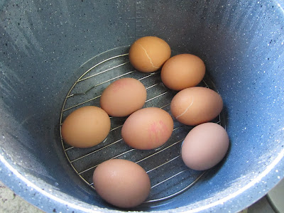 Huevos en salsa verde olla GM