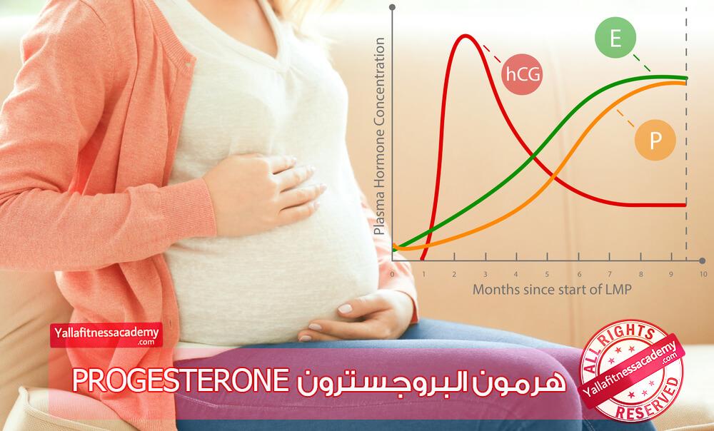 هرمون البروجسترون Progesterone