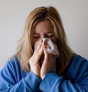 penyakit flu
