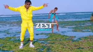 Download Video | Zest - Magnet