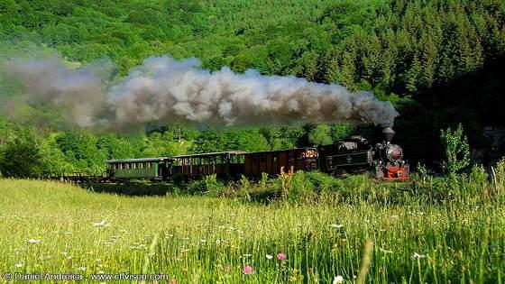 Mocănița, vara pe Valea Vaserului, Maramureș