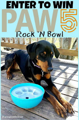 Enter to WIN a #PAW5 Rock 'N Bowl from #LapdogCreations - Penny thinks your dog will love it! #doggiveaway #dog bowl ©LapdogCreations #sponsored