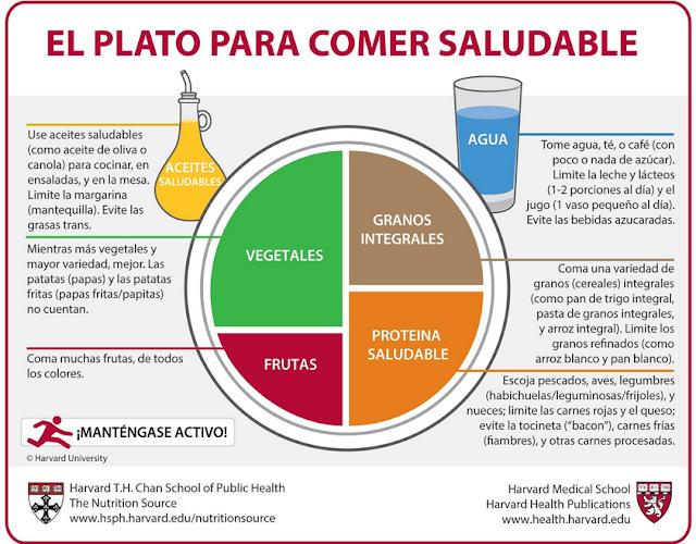 Plato-saludable-U-Harvard