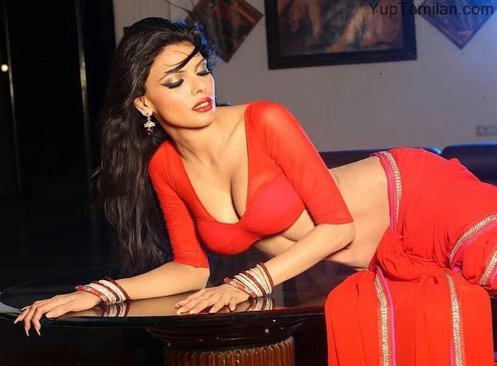 South Indian Actress SAREE Photos|Hottest Saree Pics with Glamourous Show