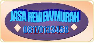 Jasa Review Murah Berbagai Jenis Website Teknik SEO Friendly