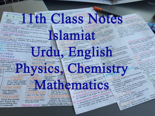 1st Year Notes of all Subjects PDF Download
