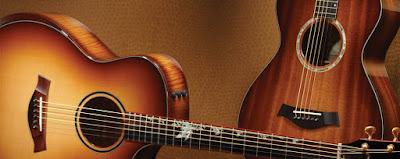 đàn guitar taylor
