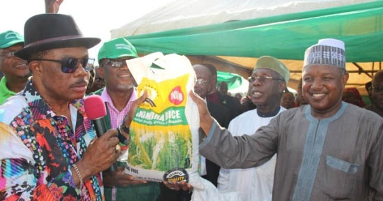 Photos: Emefiele, Ogbeh, Bagudu storm Anambra as Obiano harvests rice