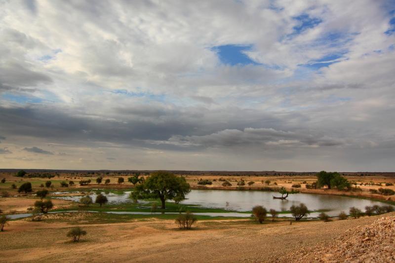 Rajasthan DEsert Oasis