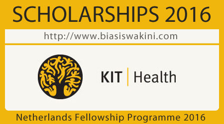Netherlands Fellowship Programme 2016
