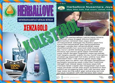 Testimoni Xenza Gold Untuk Kolesterol