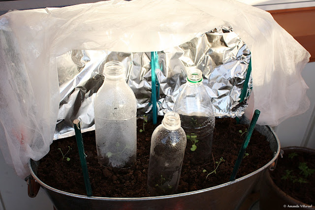 Use aluminium foil as reflector and make mini greenhouses from old plastic bottles