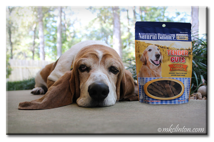 Basset Hound laying beside a bag of Natural Balance Tender Cuts