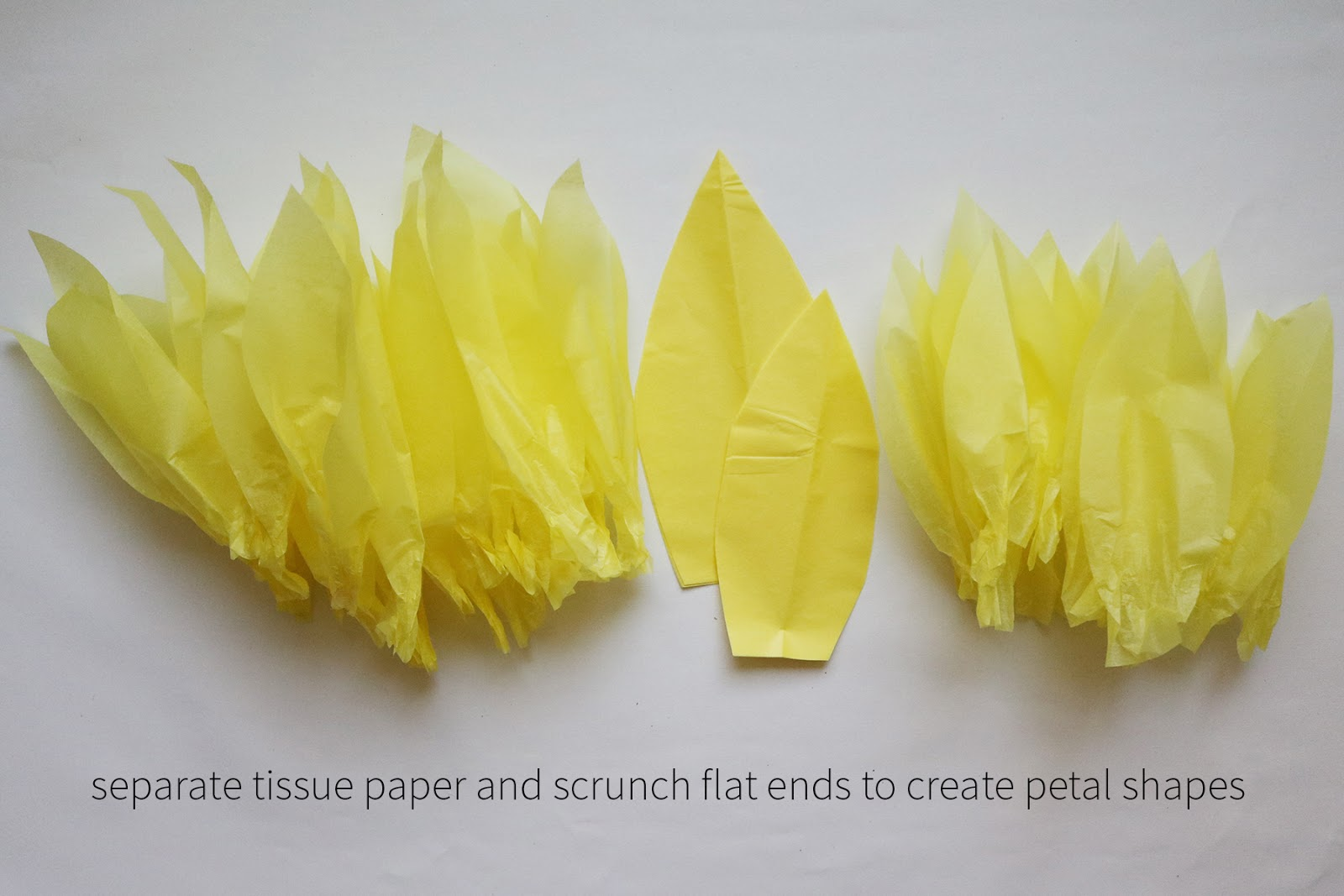 diy giant tissue paper flowers | Creative Bag