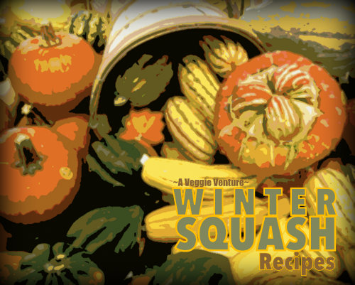 Tired of the same-old roasted squash? Find new inspiration in this collection of seasonal Winter Squash Recipes ♥ AVeggieVenture.com, savory to sweet, salads to sides, soups to supper, simple to special. Many Weight Watchers, vegan, gluten-free, low-carb, paleo, whole30 recipes.