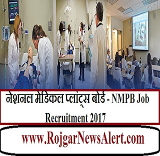 NMPB Job Recruitment 2017